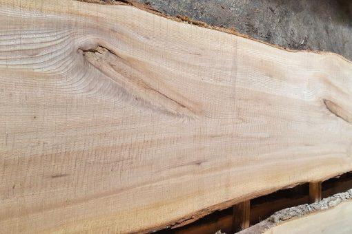 brestové drevo